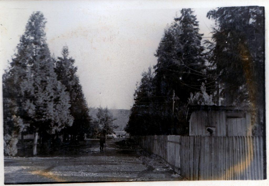 086 1 — Chkhorotsku,Ge