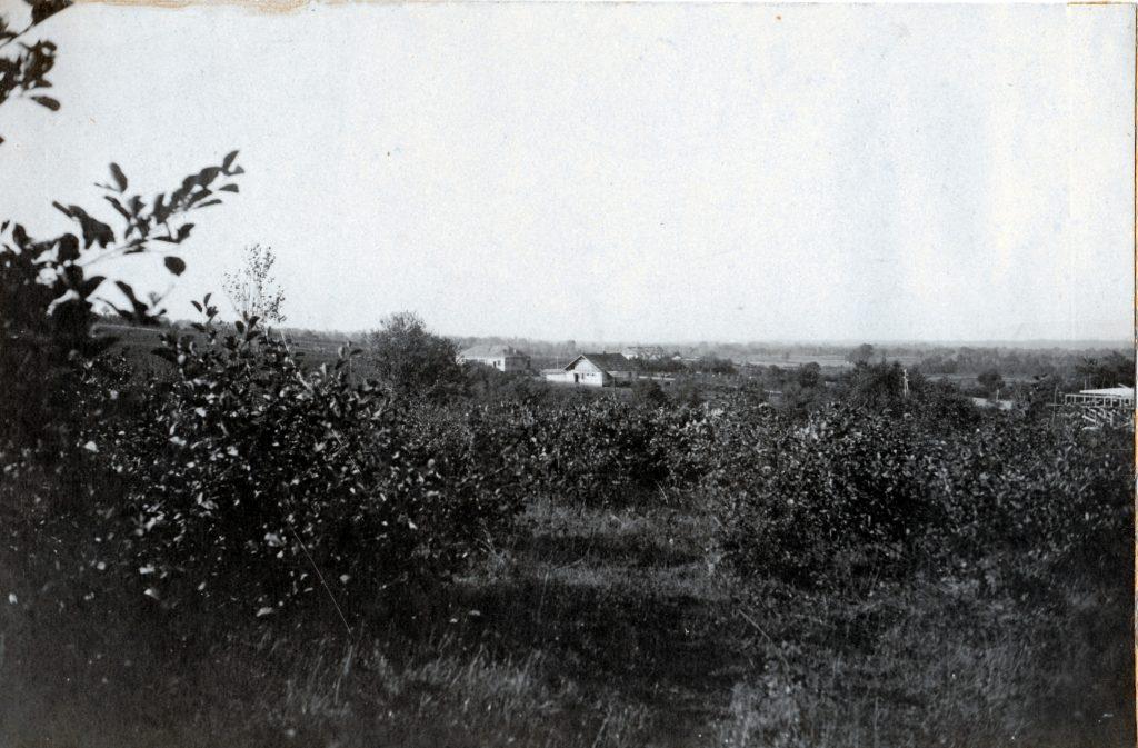 10 — Chkhorotsku,Ge